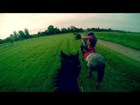 Trénink z pohledu žokeje, Praha / Horse Race Training POV Helmet Cam, Prague Racecourse