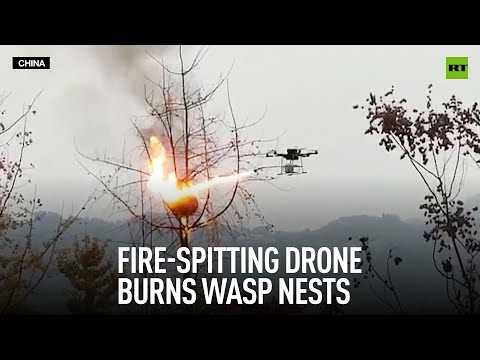 RT: Fire-spitting drone burns wasp nests