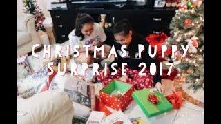 CHRISTMAS PUPPY SURPRISE 2017 *Emotional*   Best Surprise EVER!!!