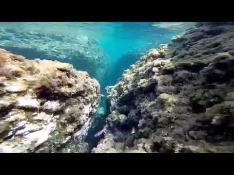 gopro hero 3 vs tg4 olympus en snorkeling