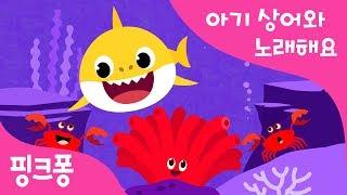 알록달록 바다 세상 | 아기상어와 노래해요 | 상어가족 | 동물동요 | 핑크퐁! 인기동요