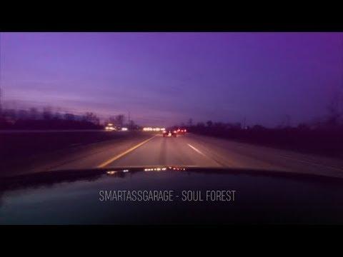 Smartassgarage - Music Video - Soul Forest