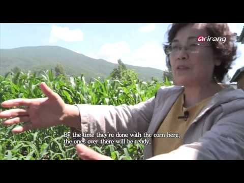 Arirang Prime _ Korean diaspora′s food captivates China _ Part 2