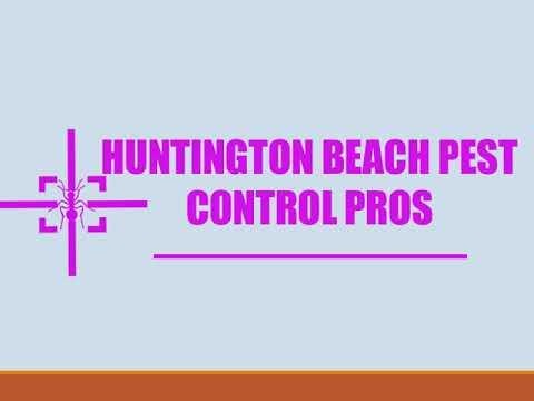 Huntington Beach Pest Control Pros - Termite Control Service In Huntington Beach CA