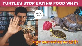 Turtles don't eat food Why ? In Hindi