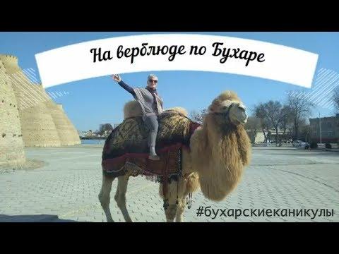 Русские княжества — Википедия