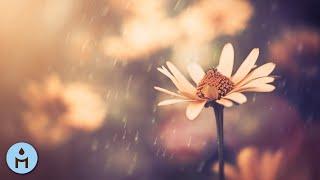 10 Hours of Rain 🌧️ Raining Sound for Sleeping, White Noise, Fight Insomnia, Rain Sleep Music