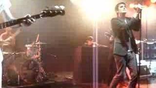 The Thrills (Live)