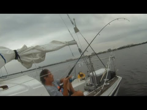 Streaming Live Fishing on my liveaboard Sailboat in Sunny Florida Tuesday morning