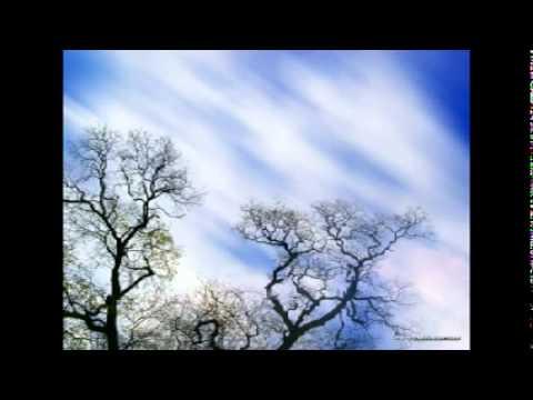 OneRepublic - Lullaby (Lyrics) (Waking Up)