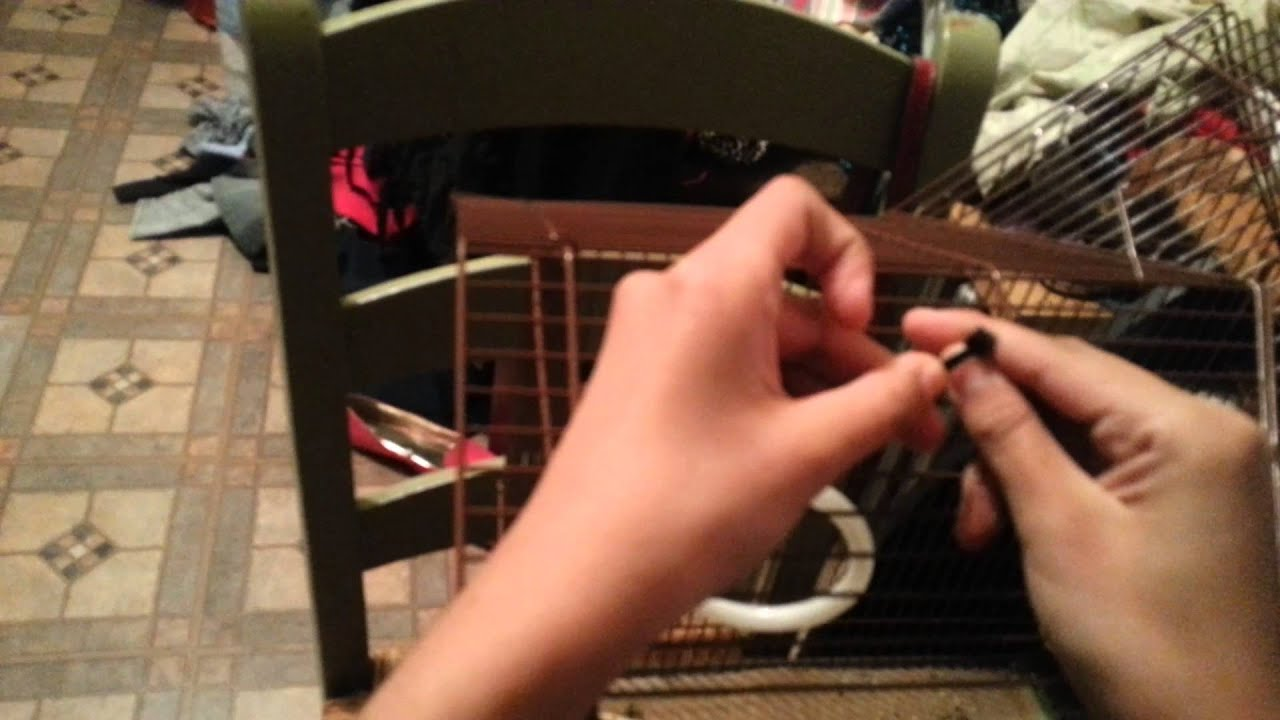 como hacer in columpio para periquitos facil