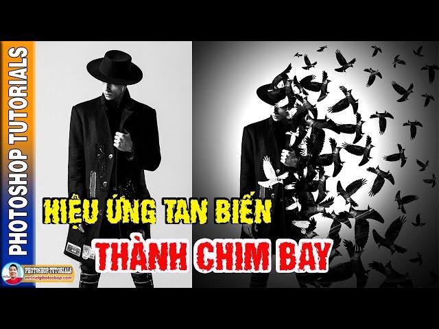 Hướng Dẫn Hiệu Ứng Tan Biến Thành Chim Bay 🔴 MrTriet Photoshop Tutorials