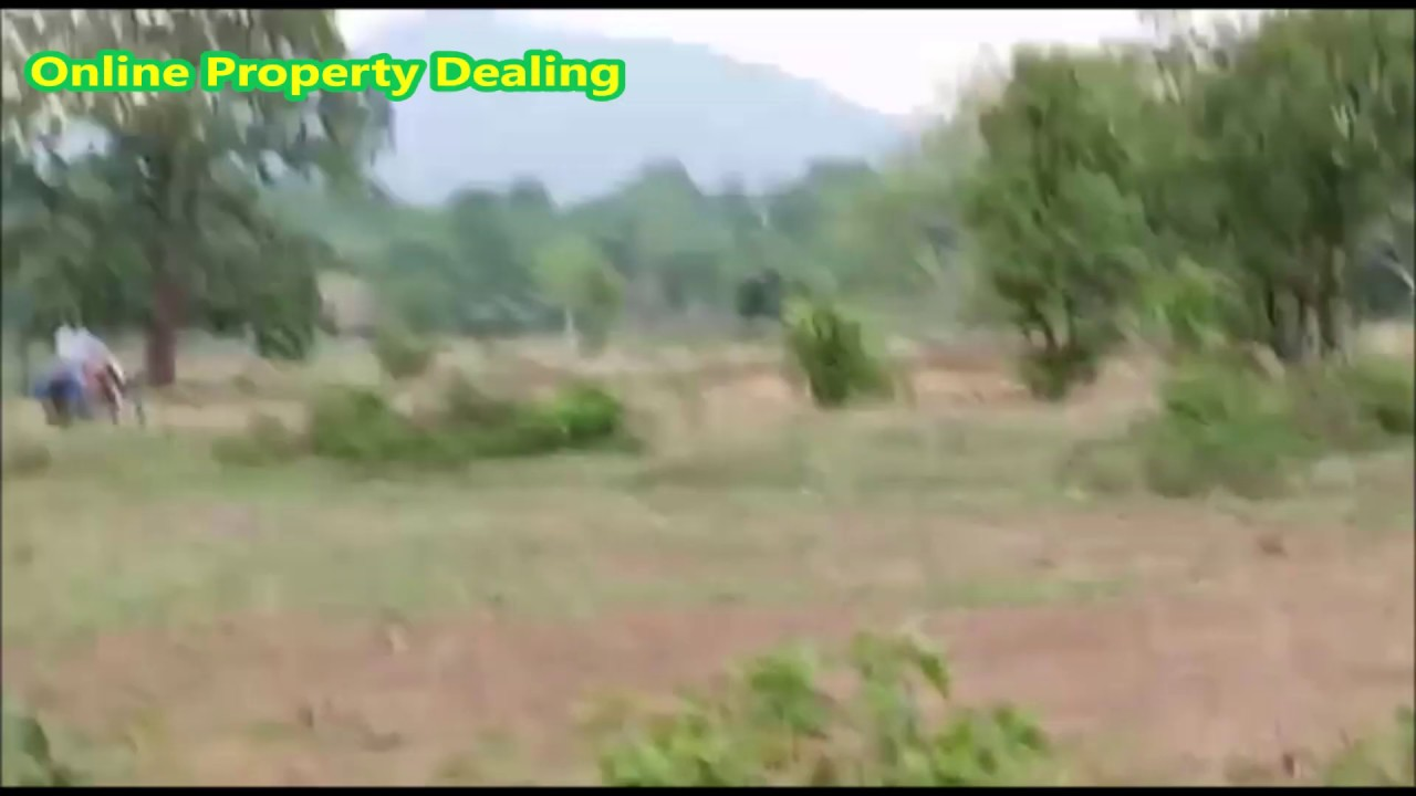 On Road 1 Acre Agriculture Land for Sale in Jhurka Bhata Narla Kalahandi  Odisha