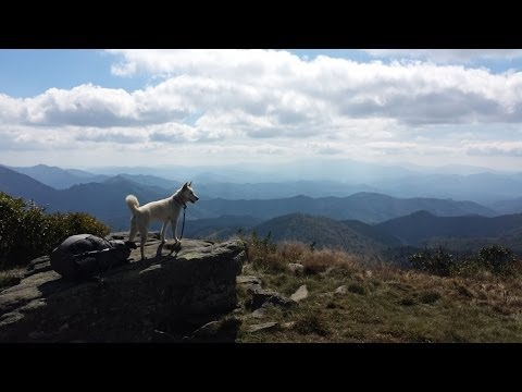 2013-appalachian-trail:-southbound-with-my-dog
