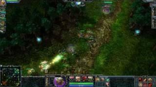 HoN Gladiator Blind Stun Video