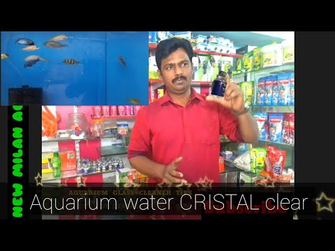 Very easy AQUARIUM glass Cleaning Tips || AQUARIUM water CRISTAL clear || Fish tank clean kaise kare