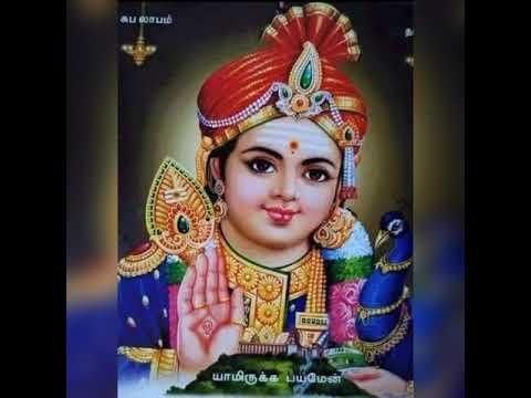 Lord Murugan WhatsApp Status (Azhagendra Sollukku Muruga)