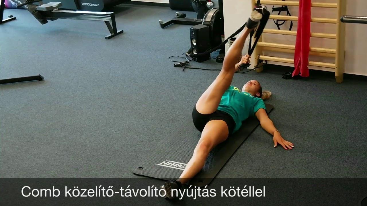 Mtsz Fitness 1160 Youtube