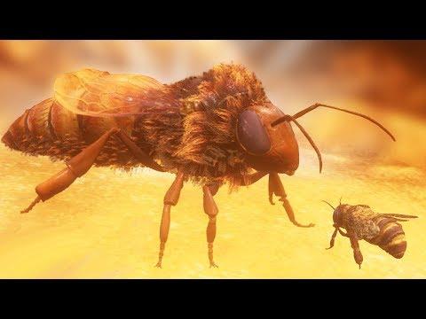 КОРОЛЕВА ПЧЁЛ СОШЛА С УМА! СИМУЛЯТОР ПЧЕЛЫ! | Bee Simulator