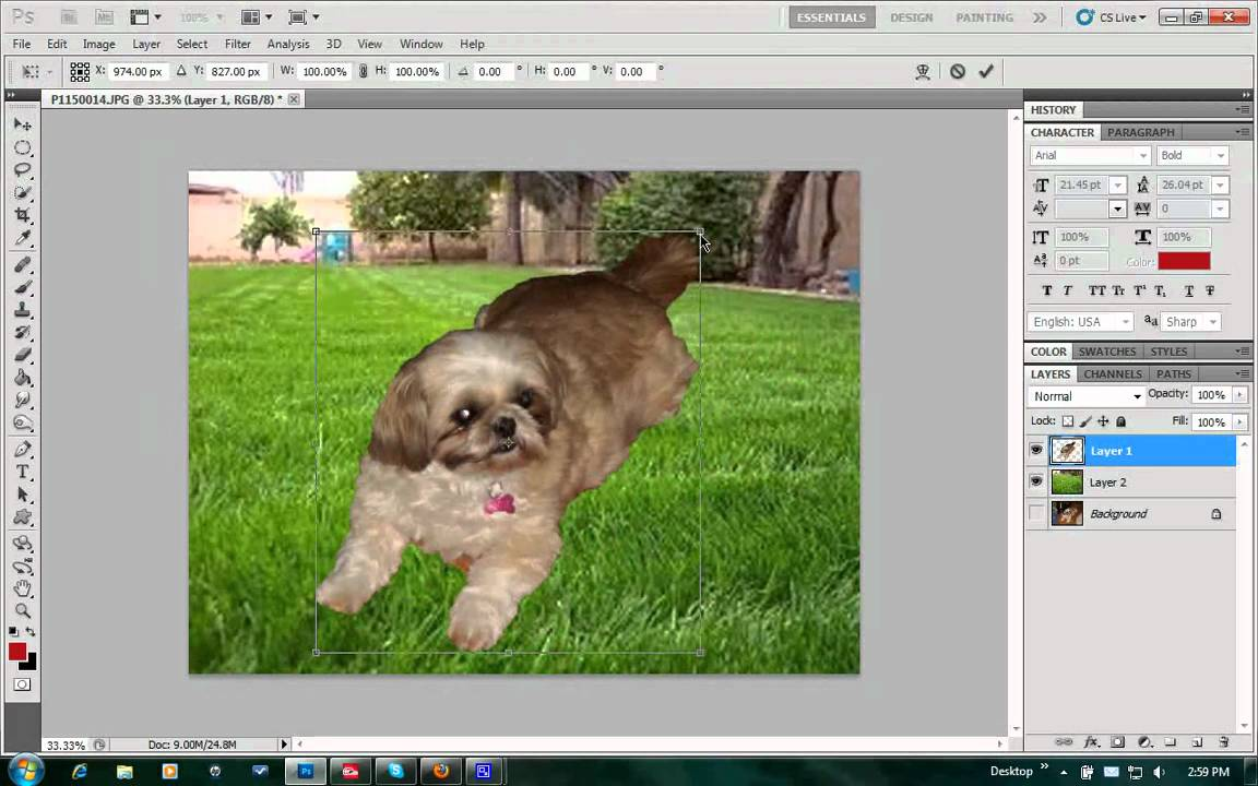 how to change background in photoshop cs5