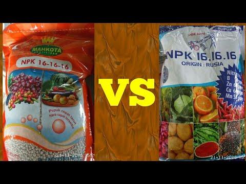 NPK 16-16-16 Mahkota VS NPK 16-16-16 Pak Tani, Pilih Mana?