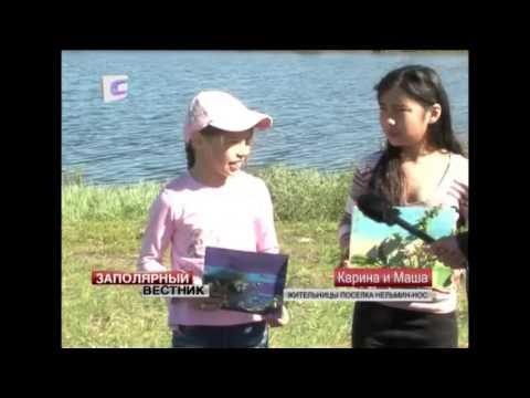 День молодежи в Нельмин-Носе стал праздником творчества, спорта и экологии