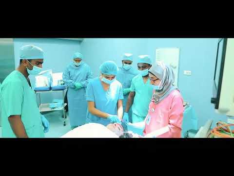 Mass Casualty Drill At NMC Royal Hospital, Khalifa City, Abu Dhabi