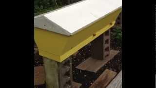 Top Bar Hive Building Process