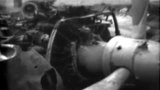 Damaged Japanese Zero, Vella Lavella, Solomons, 10/29/1943 (full)