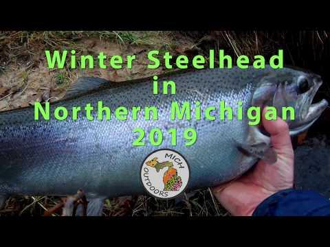 Winter Steelhead Fishing In Michigan: Flyfishing For Steelhead