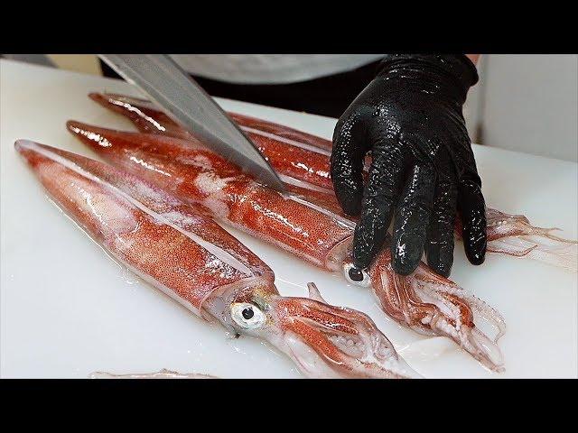 Japanese Food - FUGU SAKE, OCTOPUS, SQUID Seafood Sushi Teruzushi Japan