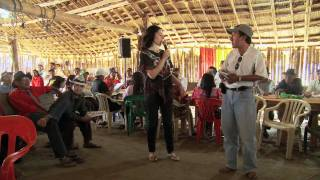 Coalition for Rainforest Nations Advances REDD+ Into the International Dialogue on Climate Change