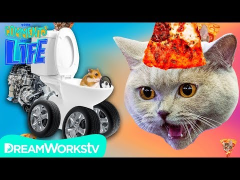 pizza-cat-eats-hamster?!-|-your-comments-come-to-life