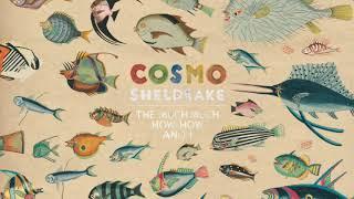 Cosmo Sheldrake - Wriggle