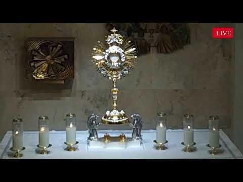 LIVE Eucharistic Holy Hour