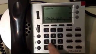 Shoretel IP Phone IP Reset