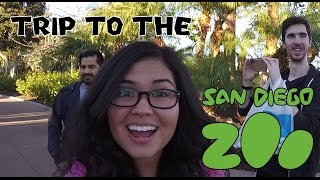 Trip to the San Diego Zoo with Lui and Daithi