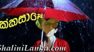 Video Copy of Sinhala new songs download MP3, 3GP, MP4, WEBM, AVI, FLV Maret 2018