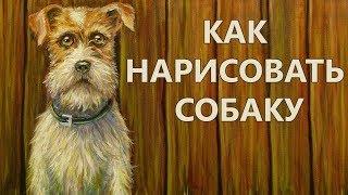 Как нарисовать собаку - How to paint a dog - Andrew Pugach