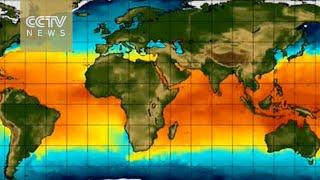 IMF says El Nino impacts on global economy are manifold