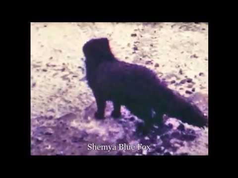 19760406: Departing Shemya, AK