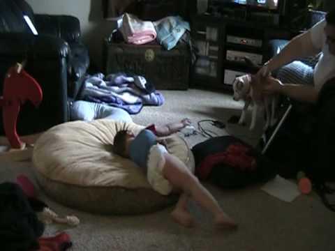 Bryce Gymnastics.MOD