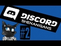 """THE GREAT DUCK-KAZOO"" 