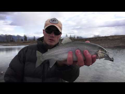 Big Sky Outdoors - Fall fishing for Lake Superior Whitefish and cutthroat