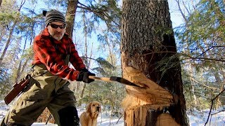 Building The Loft of the Log Cabin using Hand Tools | Axe, Cherry Tree, Ostrich, Snowshoeing