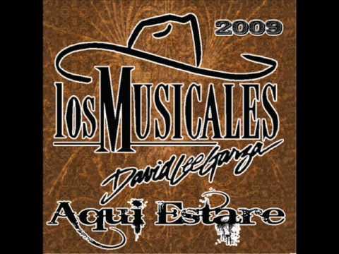 David Lee Garza y Los Musicales - Pasan Los Anos.wmv