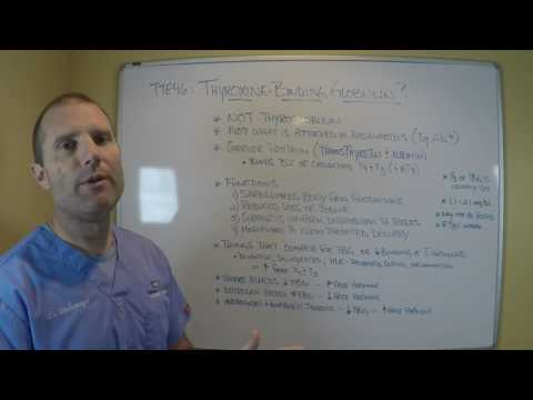 TTE46 Thyroxine Binding Globulin