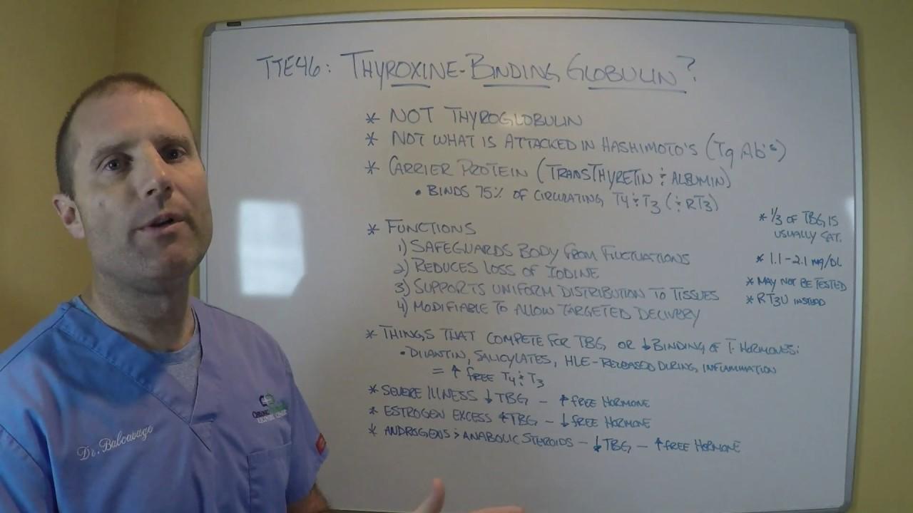 Tte46 Thyroxine Binding Globulin Youtube