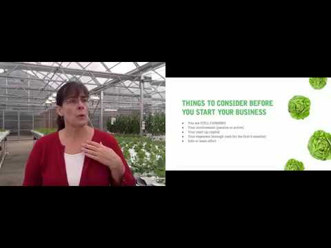 How To Start A Hydroponics Business | American Hydroponics W