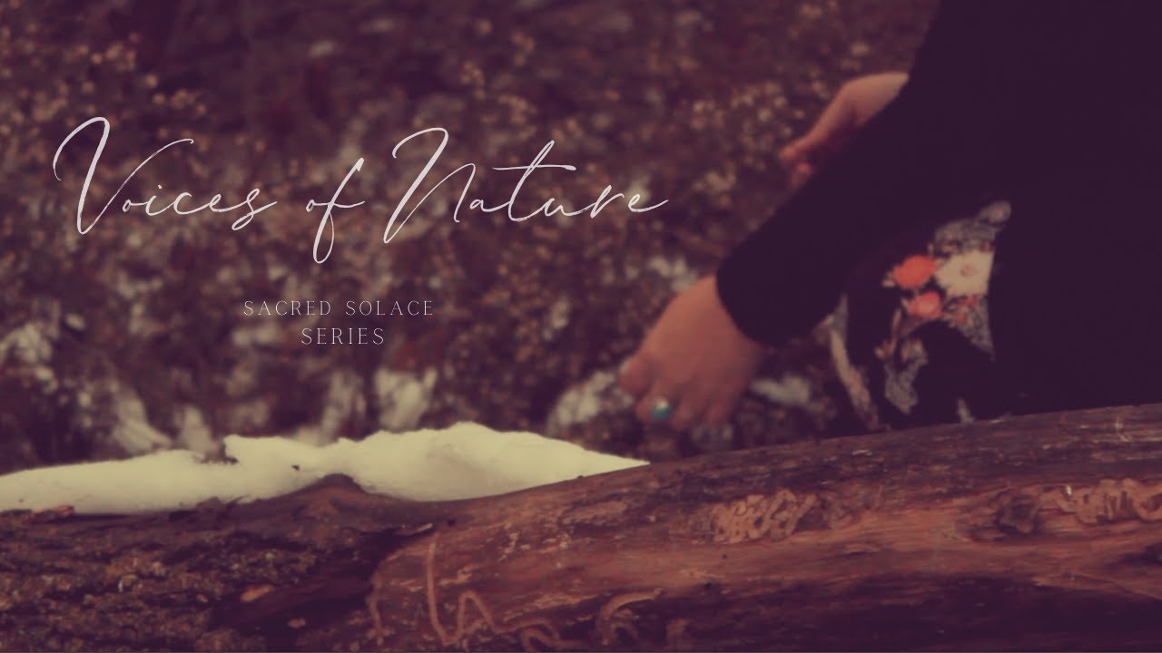 Voices of Nature | Sacred Solace Series | Short Film